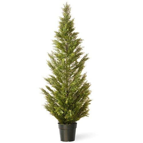 National Tree 60 Inch Arborvitae Tree in Dark Green Round Plastic Pot (LMC4-700-60-1)