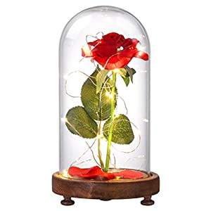 Silk Flower Arrangements FRCOLOR Beauty and The Beast Rose, LED Night Light Rose Flower Lamp Glass Cover Lamp for Valentines Gift Mothers Day Wedding