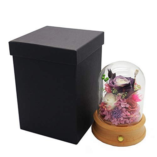 WANG LIQING Altavoz Bluetooth Preservado Flor de Rosa Vidrio Inmortal Flor de...