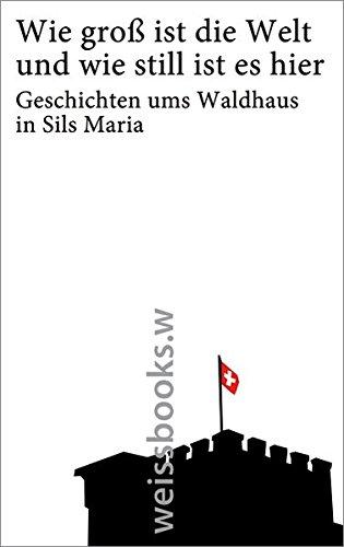 Wie groß ist die Welt und wie still ist es hier: Geschichten ums Waldhaus in Sils Maria