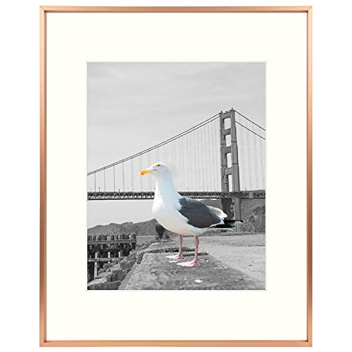 Frametory, Metal Aluminum Frame Collection with Ivory Color Mat & Real Glass (Rose Gold, 1-Pack, 16x20 for 11x14 Photo)