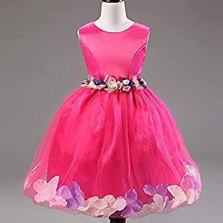 Rose Mix Pageant Flower Girls Princess Dress Kids Party Wedding Bridesmaid Tutu Dress 5 To 6 Years