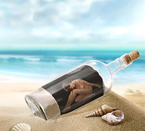 Pintura por números al óleo Kits de pintura Lienzo digital Arte la pared Pinturas Decoraciones Regalos(40X50 cm) sin marco-Botella de deriva de playa