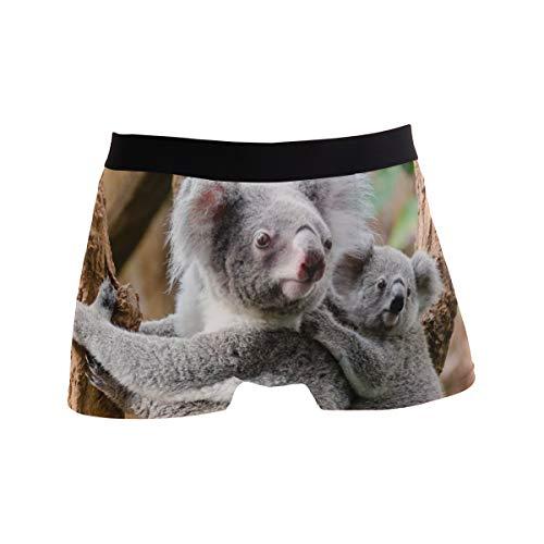 PINLLG Herren Boxershorts Koala Phascolarctos Bär, für Jungen, Jugendliche, Herren, Polyester, Spandex Gr. M, Mehrfarbig