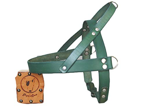Green Leather Dog Harness, Ideal for All Breeds, Adjustable Dog Harness, YupCollars, Made in Italy