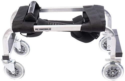 Massagetisch-Transportwagen (Trolley) für Profis – Qualitäts-Aluminiumrahmen – leicht, stabil, langlebig, sehr beweglich – 3 Jahre Garantie