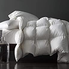 Save on Royoliving Premium Silver Down Comforter