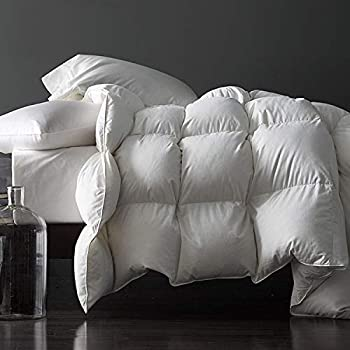 Royoliving Premium Silver Down Comforter King Size All Season Medium Warmth Solid White 100% Egyptian Cotton Cover Down Proof Duvet Insert with Corner Tabs 60 Oz