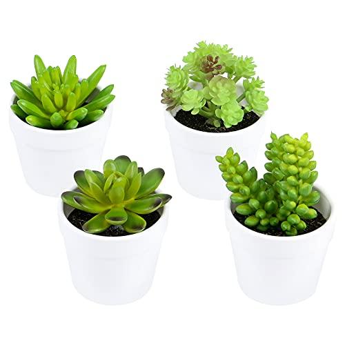 Olrla Lot de 4 mini plantes succulentes artificielles en pots pour la maison le bureau le jardin décoration