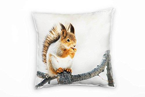 Paul Sinus Art Tiere, Eichhörnchen, orange, braun, weiß Deko Kissen 40x40cm für Couch Sofa Lounge Zierkissen - Dekoration zum Wohlfühlen