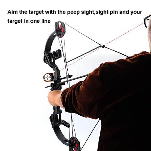 SHARROW Junior Compound Bow Archery Set with 4 Arrows 15-29lbs Children Bow and Arrow Set Youth Archery Training Shooting Game Gifts (Black)