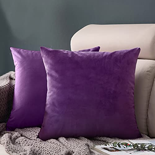 FORTRY Juego de 2 fundas de cojín de terciopelo suave y sólido, 65 x 65 cm, decorativas, cuadradas, para sofá, dormitorio, sofá o sofá, color lila