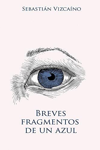 Breves fragmentos de un azul de Sebastián Vizcaíno