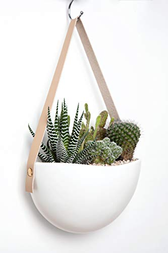 Mkono Ceramic Hanging Planter Wall Planters Set of 3 Modern Flower Plant Pots for Succulent Herb Air Plant Live or Faux… 5 These wall hanging planter can be used to add some vertical greenery to any wall in your home, great to display your lovely plants like cactus, herbs, succulents, air plants or other small plant. Beautifully for storage paint brushes, pens or other small things. Suitable for indoor and outdoor use. Material: white ceramic flower pot, leather strap and brass screws. Wide version of the plant pot will be better to display your plant collection. Wall hanging design is perfect for keeping your lovely plants out of the reach of pets and children! Bring modern design and industrial style to your wall with a leather strap and a solid brass screw. High fired porcelain creates a white smooth matte glaze look, and the interior is finished with glaze. Elevates the room and accentuates the beauty of your houseplants with its simple but sculptural presence.