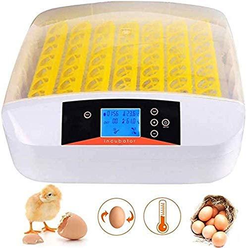 Brutmaschine Vollautomatisch Inkubator 56 Eier Brutautomat/Brutapparat Intelligent Geflügel Incubator Egg Brutkasten Motorbrüter Brutgerät mit LED Anzeige Temperatur und Feuchtigkeitsregulierung