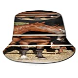 PUIO Fishing Hat,Nice Thoroughbred Young Horses Standing at The Stable Door Summer Afternoon,Hiking Boonie Safari Sun Caps Traveling for Men&Women for Outdoor Gardening