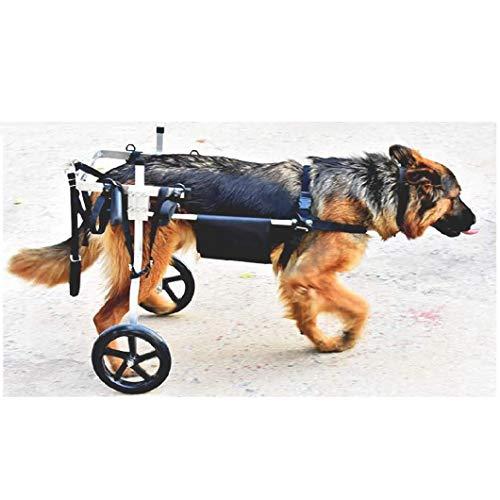 Silla de Ruedas Ajustable para Perro, Coche para discapacitados paseado con Perros, para rehabilitación de Patas traseras, Peso aproximado 15-60 kg