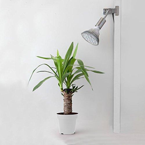 LED PlantLight 18W クリップタイプ 植物育成使用 白色電球 E26 観葉植物 水耕栽培 水草栽培 …