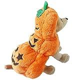 HIMAPETTR Halloween para Mascotas Traje, Calabaza Cosplay Disfraz,con Divertido Festival Fiesta, para Gatos Dog