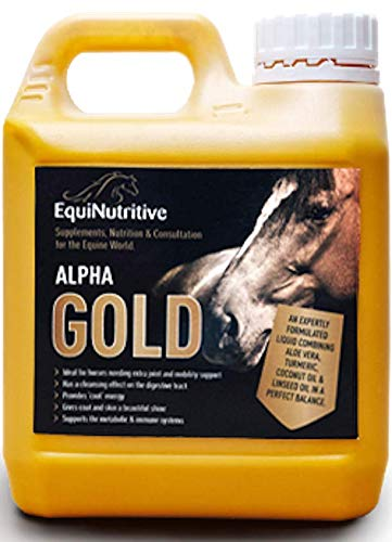 Alpha Gold Liquid Turmeric 1L | 100% Natural Horse Joint Supplement, All Ages & Breeds | Supports & Nourishes Hips & Joints and Maintains Mobility | With Aloe Vera, Coconut & Linseed Oil