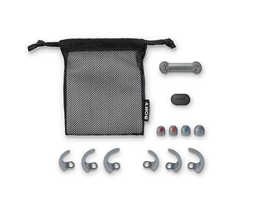 Sony MDR-XB510AS Sport-Kopfhörer (Extra Bass, spritzwassergeschützt, PX57-Design, In-Ear) Grün