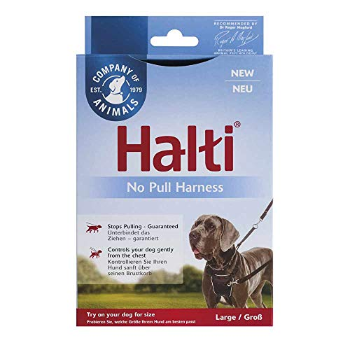 The Company of Animals Halti Nein Gurtverstellsystem Schwarz - L - Schwarz Clear, Unisex, COA0942
