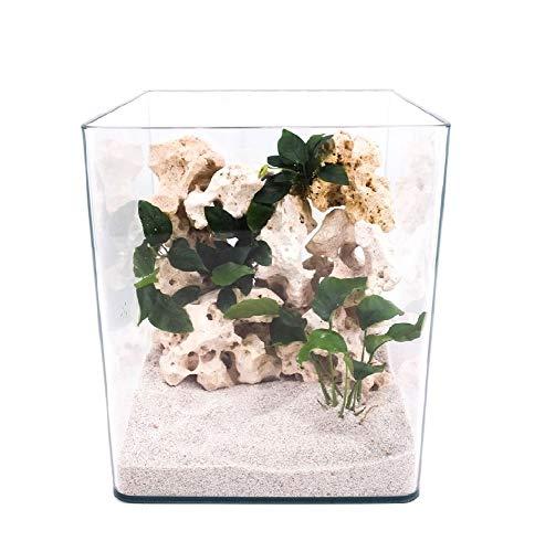 Amtra Technik Nanotank 20 Aquarium Abdeckung Unterlage Cube Becken Glasbecken Glasaquarium Panoramaglas Glas Süßwasser Würfel Cube
