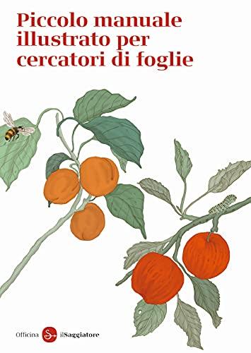Piccolo manuale illustrato per cercatori di foglie. Ediz. a colori