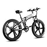 W Wallke 26 inch Fat Tire E-Bike 750W Mountain Snow Electric Bicycle 48V10.4ah Beach Cruiser Adult Auxiliary ebike Double Disc Hydraulic Brake System (Silver Black)