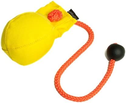 Mystique Dummy Ball Dog Training Toy 150g