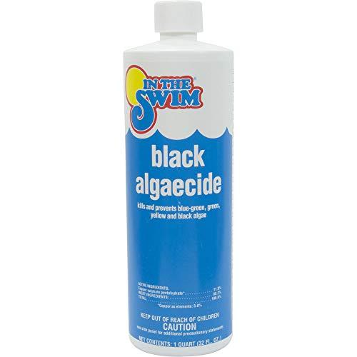 In The Swim Black Pool Algaecide - 1 Quart