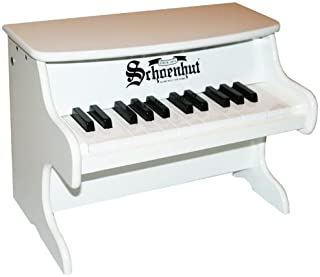 Best Schoenhut My First Piano Of 2019 Top Rated Reviewed