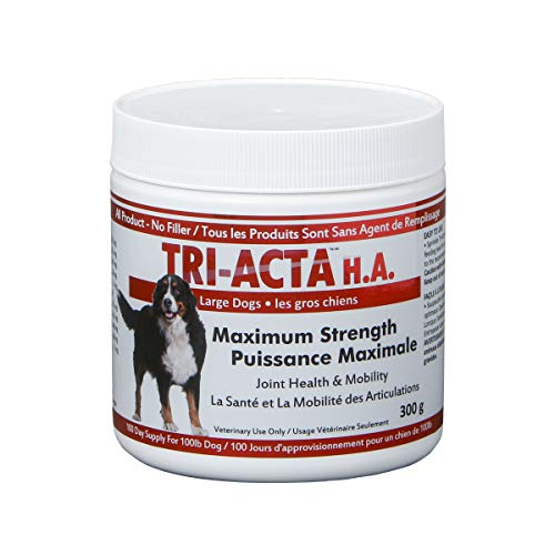 Integricare Tri-Acta H.A. Maximum Strength, Pharmaceutical Hip and Joint Supplement, Helps Your Pet Stay Active and Pain-free Due To Aging - for Dogs 300 Gram