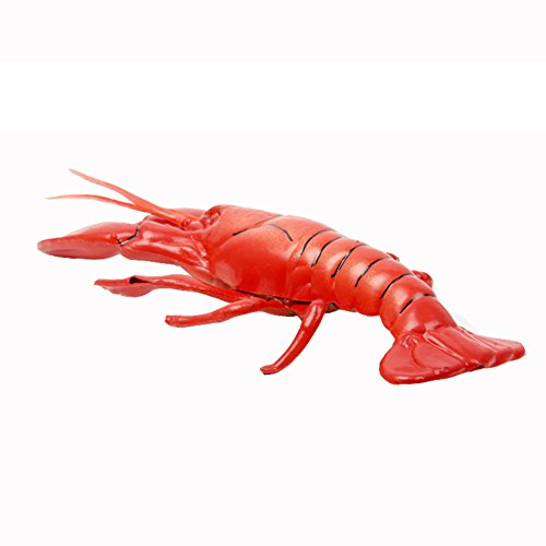 Transcend11 Fake Cooked Lobster Faux Simulation Lifelike Fish Food Home House Party Kitchen Cabinet Desk Decoration Hotel Store Display Model Photography Props Kids Play Food Toy(S Size)
