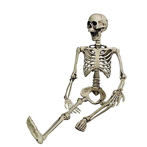 ODJOY-FAN Huge Halloween Skeleton Bones Full Size Human Skull Skeleton Bones Halloween Decor for Halloween Skeleton Halloween Party Supplies Party Favors Decorations