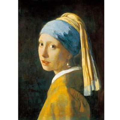 Unbekannt 1000 Stück Holzpuzzle 50 * 70cm Girly Paper Puzzle mit Perlen-Ohrringe 1000 Stück Erwachsene Dekomprimierung Großen Puzzle World berühmtes Gemälde Vermeer p122