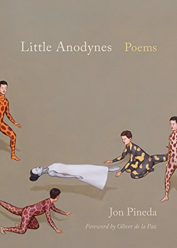 Little Anodynes: Poems (Palmetto Poetry Series) (English Edition)