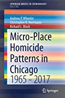 Micro-Place Homicide Patterns in Chicago: 1965 - 2017 (SpringerBriefs in Criminology)