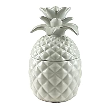 Party Explosions Tropical Pineapple Distressed Style Decorative Jar with Lid