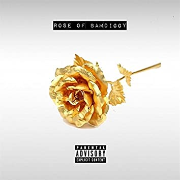 Rose of Bamdiggy