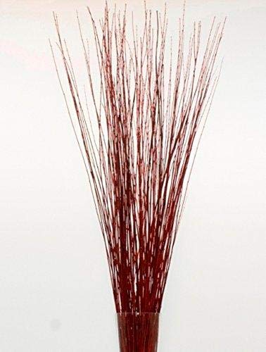 Green Floral Craft | 60-70 Stem Dried Asian Willow Decorative Branches 3-4 Feet Tall - Perfect Home Decoration and Floor Vase Filler (Wine Red)