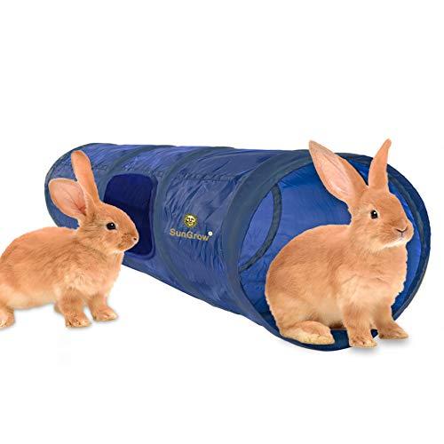 Rabbit Hutch Tunnel