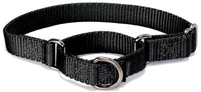 "PetSafe Martingale Collar 1"" Large, Black from Toys & Behavior"
