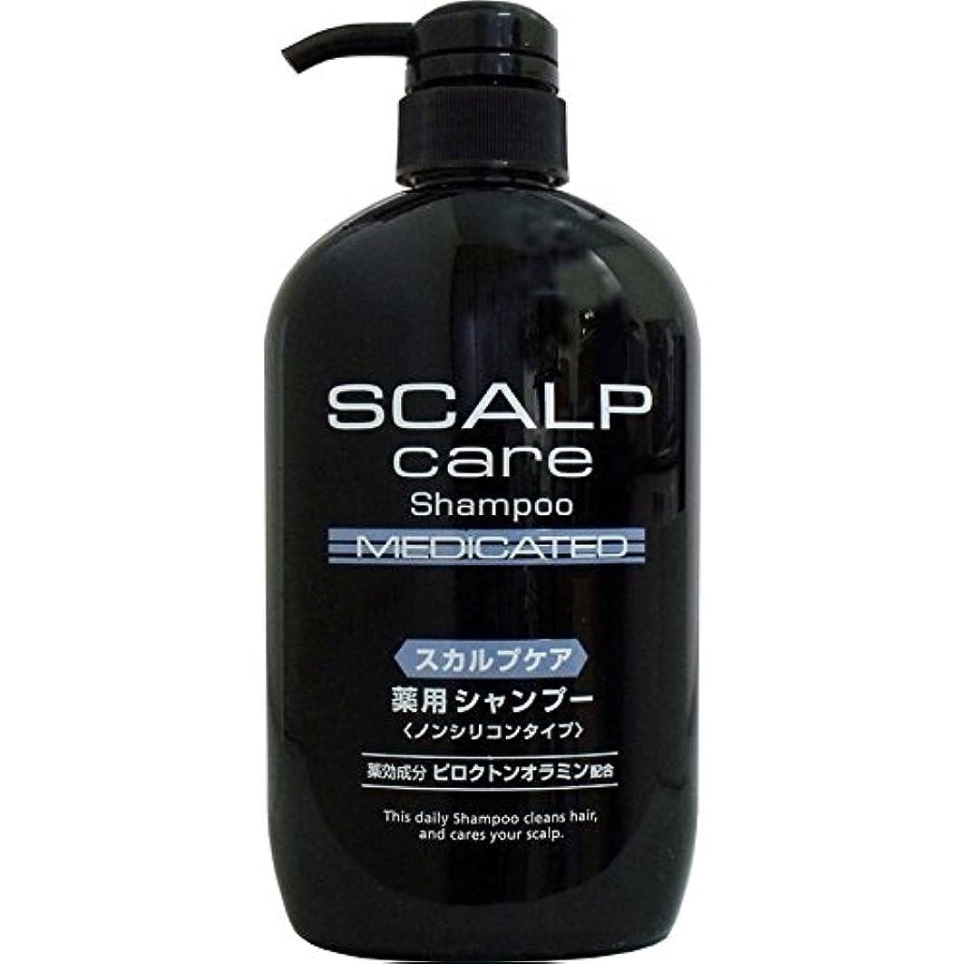 以下罰頭痛ノンシリコンシャンプー 毛穴の奥の汚れまで、しっかり洗い落とす 日用雑貨 スカルプケア 薬用シャンプー ノンシリコンタイプ 600mL【5個セット】