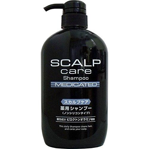 バス用品 お風呂 髪の毛 髪 洗浄後の頭皮を保湿し、乾燥を防ぎ、頭皮環境を整える 人気商品 スカルプケア 薬用シャンプー ノンシリコンタイプ 600mL【2個セット】