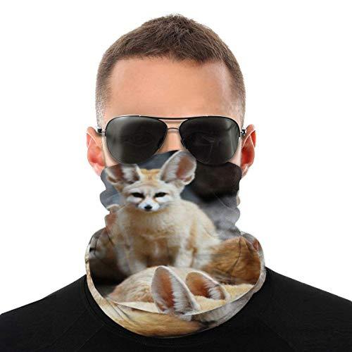 Animal Mignon de Renard Fennec Cache Cou Anti-Solaire Tour de Cou Homme Femme Masque Bandana Anti-UV Cache-Col Unisexe Cagoule Bandeau