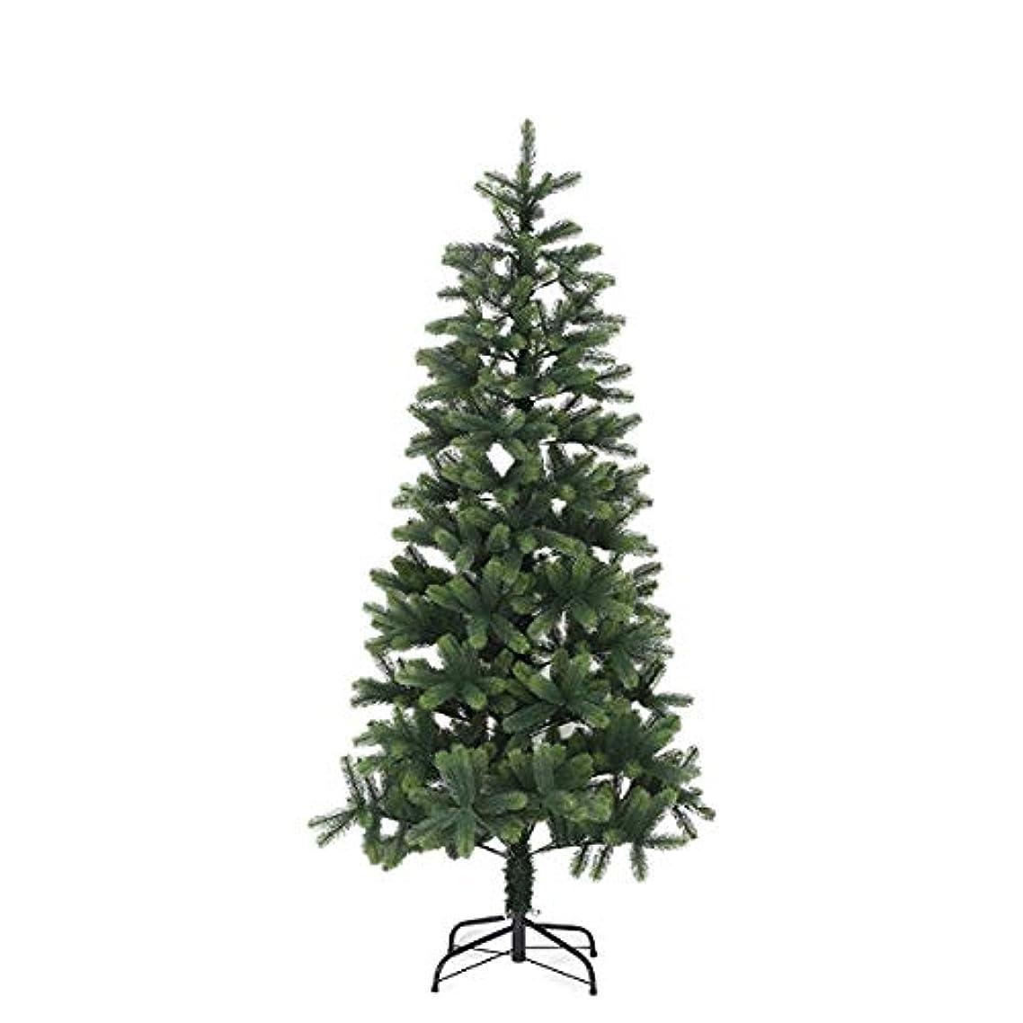 異なる中断提供されたクリスマスツリー リアル枝 ドイツトウヒツリー ヌードツリー 150cm