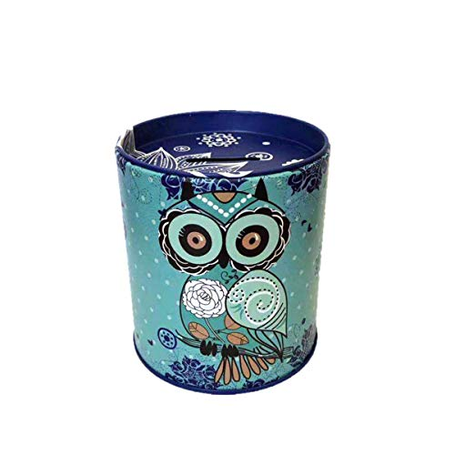 Owl Piggy Bank Tin Save Spend Share Giving Coin Money Can Keepsake Home Bedroom Nursery Party Decor Ornament Pen Pencil Brushes Holder Stationery Dresser Organizer Cup Kids Boys Girls Adults - (Blue)