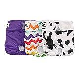 Hisprout weiblich Hund Windel wiederverwendbar waschbar Langlebig Hund Windeln Hose,Colorful Union,L