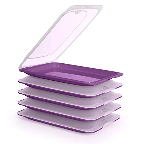 5er-Set Frischhaltebehälter für Lebensmittel, optimale Aufbewahrung von Aufschnitt im Kühlschrank, Maße 17 x 3,2 x 25,2 cm (5 x Aubergine)